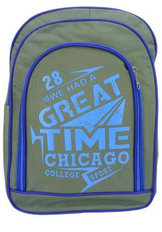 Royal 100 College & Laptop Casual Bags