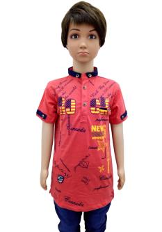 Royal 100 T-shirt For Boy