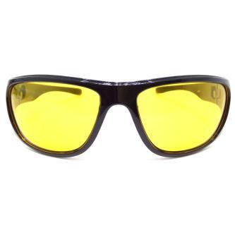 Royal 100 Wayfarer Sunglasses For Men