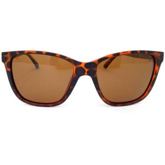 Switch Wayfarer Sunglasses For Men