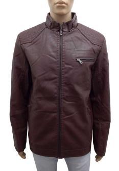 Golden Bird Jackets For men
