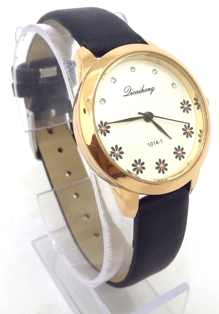 Dicaihong Watches For Women